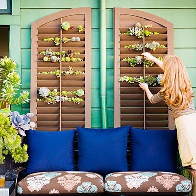 Beautiful garden trellis with wooden shuttters